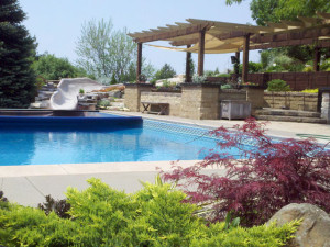 Pool waterslide pergola